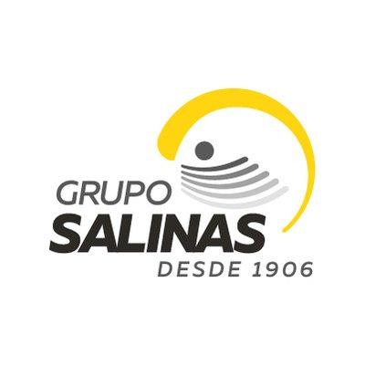grupo salinas en mexico